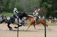 Osgoode Medieval Festial Volunteers needed