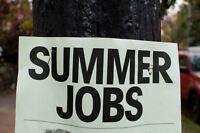 2 Student Summer Jobs