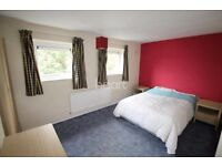 Double room to let 85£/W