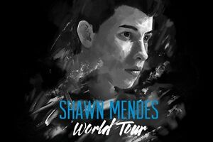 SHAWN MENDES TIX/REDS SECTION 117 ROW J/SOLD OUT SHOW
