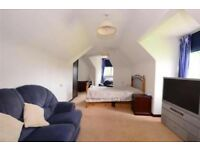 2 room LARGE Suite for rent in BEAUTIFUL Brighton Location (ALL INC)