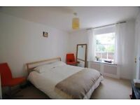 Rooms to Let, Modern and Clean