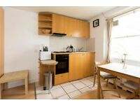 Studio flat in Penywern Road Penywern Road, Earls Court, SW5