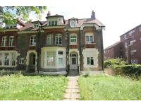 Well presented one bedroom apartment to rent in Crouch Hill N4