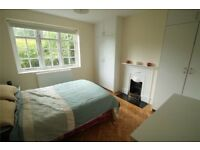 Very nice Double Bedroom in a cosy modern flat for rent near Ealing Broadway/West Ealing