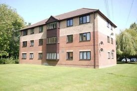 Chandlers Ford Flat to rent