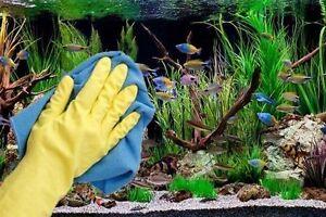 Aquarium Maintenance / Entretien d'Aquarium + Autres services !