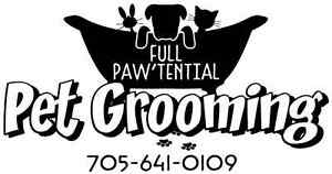 All Breed & Sizes Dog & Cat Grooming