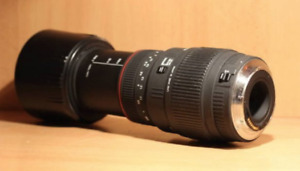 Sigma 70-300mm f/4-5.6 Zoom lens (Canon)