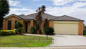 Room up for grabs. Thurgoona Albury Area Preview