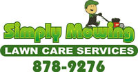Fall clean ups, leaves, branches, aeration, fertilizers, etc
