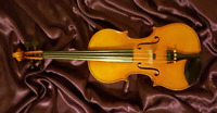Violin & Piano lessons - First lesson is FREE