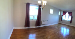 Main floor and finished basement of home