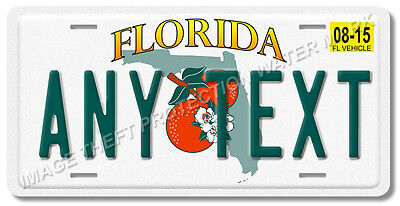 "Florida ANY TEXT Your Personalized Text Aluminum Vanity License Plate Tag 6""x12"""