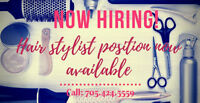 Hairstylist Position Available
