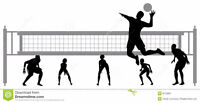 Volleyball Player Wanted (Adult female)