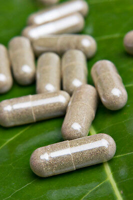 information on the dosage of icariin extract