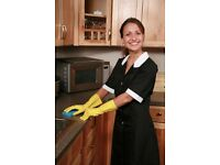 Experienced Domestic cleaner required - £10.00 per hour