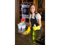 Cleaning job, part time work, cleaner + ironer for private houses Beaconsfield HP9