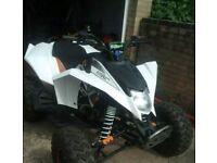EGL mad max 250cc quad