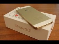 Apple IPhone 5S Gold 32GB Unlocked With Warranty