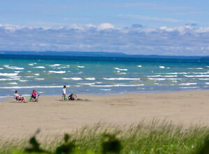 COTTAGE RENTALS IN WASAGA BEACH ON A BEACHFRONT PROPERTY