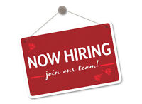 Entry Level Positions Available - Customer Service/Sale/Office