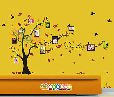 Wall Decal Sticker Removable Photo Frame Tree Family Quote 39 H X 80 W 2 Colors