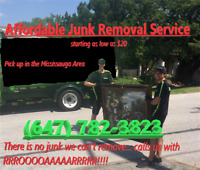 Too cheap $20 junkremoval *Mississauga*