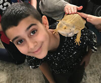 Reptile shows, photo booths, bubble shows, and much more!