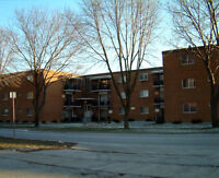 Two Bedroom Apartment - All Inclusive - Wyandotte Street East