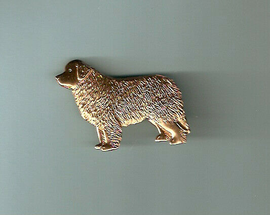 Newfoundland Dog Gold Plated Brooch Pin Jewelry LAST ONE!