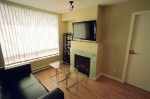 Furnished (no pet allowed), 1 bdrm + 2 dens in Downtown Van
