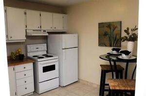 Live the Downtown Life in a Spacious-Bright Suite! London Ontario image 3