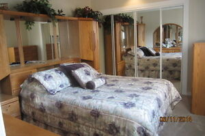 Fully furnished & serviced 2 BR Condo Palliser SW $2500 PM
