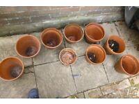 9 x clay plant pots
