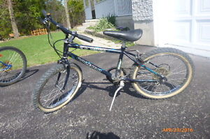 20 inch Raleigh L'il Rock