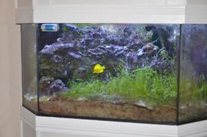 125Gal corner Tank with RO Unit