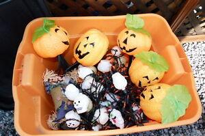 décorations Halloween Saguenay Saguenay-Lac-Saint-Jean image 6
