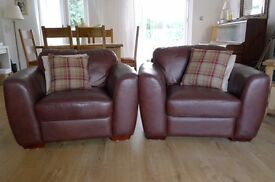 Luxury leather armchairs - brown - double sprung construction for extra comfort