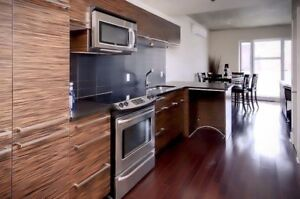 SHORT TERM 1-5 MONTHS! LUXURY CONDO (3-1/2) DOWNTOWN MONTREAL