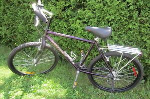 Nakamura Mountain Bike, Made in Canada