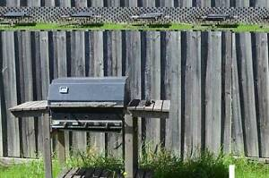 BBQ for FREE Thomastown Whittlesea Area Preview