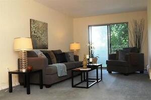 Live the Downtown Life in a Spacious-Bright Suite!