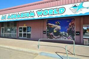 Freehold and/or Business Opportunity – A1 Aquarium World Cranbrook Townsville City Preview