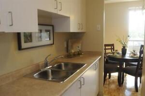 2 Bedroom For Rent - Mississauga - Near Square One - Spacious