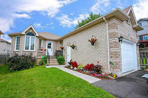 Spacious Newly Renovated One Bedroom Basement Apartment