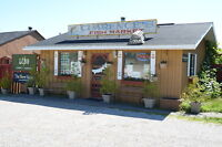 Smoked Fish Market on hwy 17 in Algoma Mills on 2.14 acres