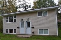 40 Huron Ave Off Sunset North Two Bedrooms Lower Level Laundry