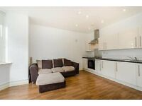 Luxury, bright and contemporary 1 Bedroom flat in Stockwell, ideal for professionals!